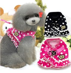 Find More Dog Collars & Leads Information about NEW 2015 All Season Various Ruffle Crown Dog Pet Cat Harness Cute Carton Dots Striped Dog Pet Harness +Leashes 2 in 1  S M L XL,High Quality harness buckles,China harness tape Suppliers, Cheap harness kit from M&A Fashion on Aliexpress.com