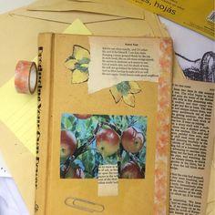 fairytales, Flowers, Poetry (@hylabrookbooks) • Instagram photos and videos