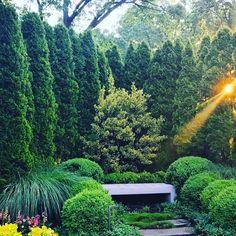 Goodnight & Good morning...... #goodnight#goodmorning#garden#trees#greenery#sunrise#sunset#nature#travel#photography#europe#france#london#uk#lebanon#france#decor#art#landscapephotography#landscaping#iran#mashhad#qom#tehran#shiraz#italy#rome#tuscany#america