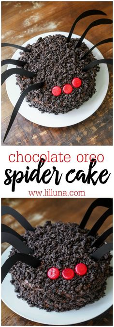Chocolate Oreo Spider Cake - a delicious chocolate cake topped with homemade chocolate buttercream frosting and Oreos with cinnamon eyes and legs - perfect for a creepy Halloween dessert! Bolo Halloween, Halloween Desserts, Halloween Treats, Creepy Halloween, Halloween Party, Halloween Cupcakes, Halloween Foods, Healthy Halloween, Homemade Halloween
