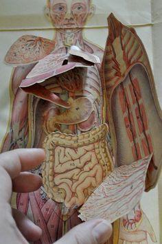 Szkiełka w kalejdoskopie