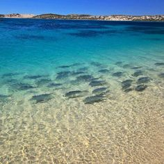 Coral Bay Western Australia. Makes you want to reach for your rod and not the camera.