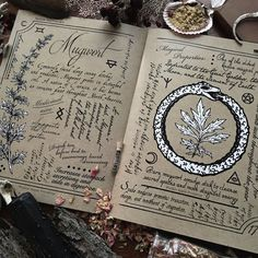 The Hedge Witch's Herbal Grimoire, second edition. Written by Alison Garber of Native Apothecary and illustrated by Adrienne Rozzi of Poison Apple Printshop PRE-ORDERS for this very special Grimoire...