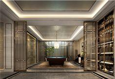 CCD - Solis Guangzhou Villa