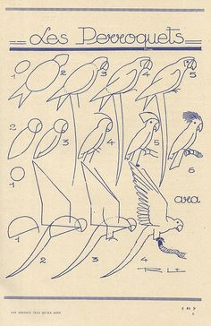 #Animales #Naturaleza #Dibujos #Ilustraciones #Artistas #Afiches #Aves