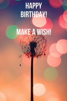 happy birthday! make a wish! click on the image to see the biggest selection of birthday wishes on the net!