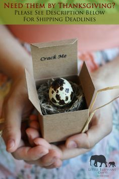 Quail Egg Custom Pregnancy Announcements & Baby Shower Invitations - Crack and Reveal on Etsy, $7.00