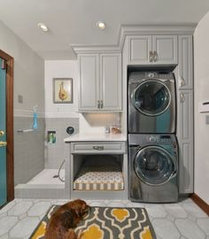 Layout with dog bath area but side by side washer and dryer instead