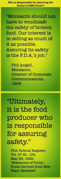 Who is responsible for assuring the safety of GMO foods?