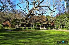 Michael Jackson's Neverland Valley Ranch – 5225 Figueroa Mountain Road, Los Olivos, CA Michael Jackson Neverland, Neverland Ranch, Santa Ynez Valley, Magical Home, Hollywood Homes, Valley Ranch, King Of Music, Mansions Homes, Never Grow Up