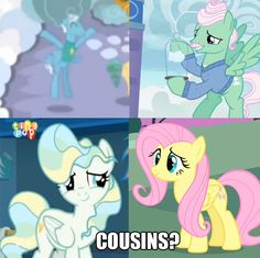 of course there cousins! and this has even more proof. Pony Pony, Mlp Pony, My Little Pony List, My Little Pony Friendship, Best Kids Cartoons, Legend Of Everfree, Childhood Ruined, Mlp Memes, Pocket Princesses