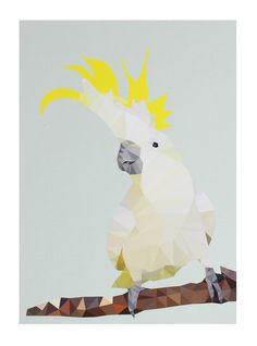 DONNIE THE COCKATOO UNFRAMED PRINT A3