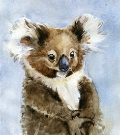 Koala by Lita Judge
