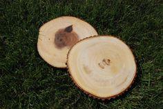 GreenPicnic FairTrade boomstam onderzetter