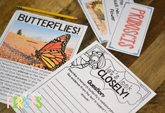 close reading all about butterflies