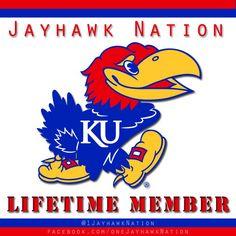 Rock Chalk for Life. University Of Kansas, Kansas Jayhawks, Rock, Fan, Country, Blue, Rural Area, Skirt, Locks