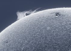 """""""What a wonderful weekend to observe the sun! Here is a bit of action at the edge of the disk.""""    September 2, 2012 © Alan Friedman 