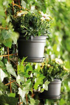potholders for on the wall of your #garden #balcony #terrace #patio #elho #pot