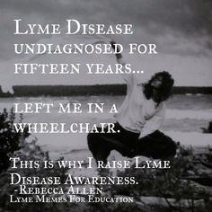 Lyme memes for education