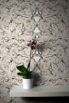 Timorous Beastie- White Moth Allover Solid Wallcovering