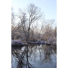 Winter Pond Photography Reflection Snow Covered Trees Rustic Woodland... ($18) ❤ liked on Polyvore featuring home, home decor and wall art