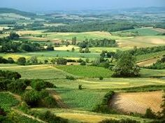 Image result for french countryside