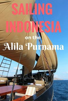 "Cruising on the uber-deluxe ""Alila Purnama"" in Indonesia offers a host of surprises and thrills - including seeing ferocious Komodo dragons! But one of the biggest surprises is how luxurious a bespoke sailing ship experience can be. Here's our story of scuba diving, hiking uninhabited islands, and lolling about beautiful beaches during our one-week Indonesian sailing adventure on this beautiful ""phinisi"" vessel ~ http://www.sandinmysuitcase.com/alila-purnama-review-cruising-indonesia/"