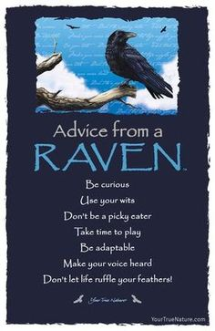 Advice from a Raven Frameable Art Postcard