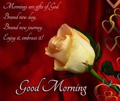 Good morning Sms, Quotes, Greetings for Girl friend, boy friend and