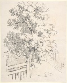 """Blau"""" / Verso, lower left, in graphite (partially erased): / / VT"""" / KL"""" / [inscribed in a circle] Tree Drawings Pencil, Landscape Pencil Drawings, Art Drawings, Drawing Trees, Vintage Wall Art, Vintage Walls, Tree Study, Tree Sketches, Photo Images"""