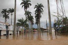 Brasiléia no Acre, fronteira com a Bolívia. Maios enchente da história - Ensaio produzido para agência Reuters/Odair Leal