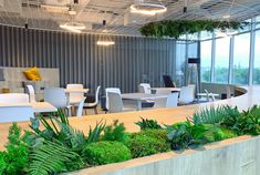 Oficinas Pierre Fabre - Hello, this is natural projects
