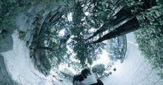 Spherical Image LINK   RICHO THETA