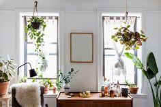 DOMINO:Tour Alison Roman's Plant-Filled Brooklyn Paradise