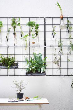 IKEA Deutschland | Für einen Garten, der ins Auge fällt, brauchst du nicht viel Platz. Egal, wie groß oder klein dein Lieblings-Draußen-Platz ist, es reicht ein Quäntchen Kreativität. Der Rest kommt mit unseren coolen Tipps wie von allein. #IKEA #Pflanzen #Garten #grüner #Daumen #Kräuter #urban #jungle #gardening #Pflanzendeko #Pflanzen #Deko #Blumendeko #Topf #Übertopf #garden #Terrasse #skandi #scandinavian #Sommer Zone Verte, Decoration Plante, Pot Plante, Iron Wire, Gardening, Cool Plants, Plant Decor, Houseplants, Metal Art