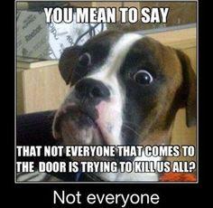 Not everyone.....
