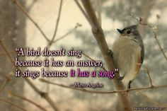 115 Best Bird Quotes Images Messages Bible Scriptures Bible Verses