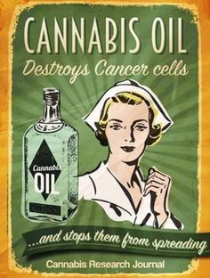 Information on CBD and Cannabidiol, medical uses, it's benefits and effect. Treating epilepsy, seizures, cancer and depression to uses in pets. Is CBD legal and the guidelines in the 50 states. Medical Cannabis, Cannabis Oil, Vintage Advertisements, Vintage Ads, Vintage Modern, Marijuana Facts, Old Ads, Cancer Cells, Oil Benefits