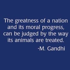 The greatness of a nation and its moral progress, can be judged by the way its animals are treated.