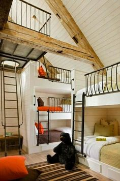 Built in bunk beds http://www.allmodern.com/Nurseryworks-Duet-Twin-Bunk-Bed-with-Bookshelves-and-Built-In-Ladder-Duet-Bunk-Bed-NWK1093.html