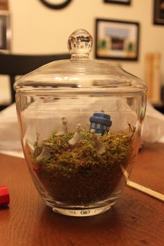 A TARDIS terrarium with Weeping Angels