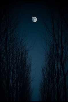 Moonlight Byuna cierta mirada