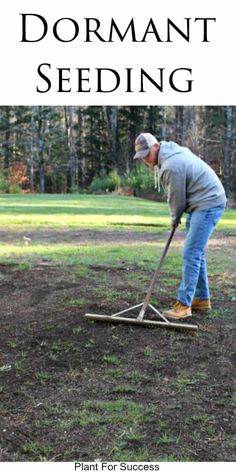 Dormant Seeding is a great strategy for lawn repair or renovation. Applying grass seed during the colder months allows the seed to germinate earlier in spring. If you stick to a good fertilizing program, your lawn will be thick and green by the end of spring. #lawncare #lawn