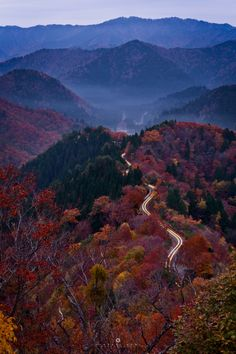 hideakisumiphotography:  Autumn scenery from a mountain pass  57mm f/11.0 ISO 100 70sec  Onyudani is located in the border with Fukui Prefecture is famous for early fall foliage spot in Kansai. Since if you are lucky can enjoy the autumn leaves with sea of clouds many photographers will visit here in autumn. This day my friend & I headed to there from Osaka in midnight and arrived around 3:30. We came across a lot of deer on the way.(Be careful driving!!) With dawn we were able to confirm…
