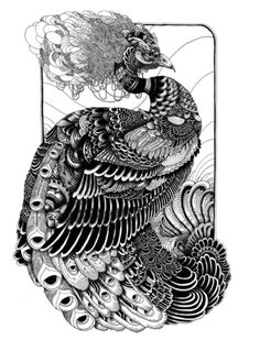 Peacock ink drawing