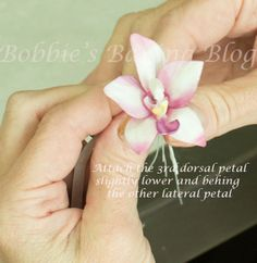 Learn the secrets how to make a flowerpaste asian ground orchid - by Bobbie @ CakesDecor.com - cake decorating website