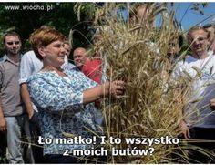 Wiocha.pl - absurdy internetu Language, Humor, Memes, Funny, Plants, Smile, Haha, Humour, Meme