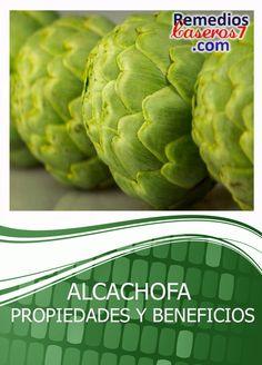Alcachofa Propiedades y Beneficios   RemediosCaseros7