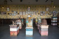 Big Island Bees Museum - Learn About Bees and Honey in this Quaint Beekeeping Farm in Hawaii Over 60, Art N Craft, Big Island, Installation Art, Textile Art, Furniture Design, Photo Wall, Diy Projects, Museum