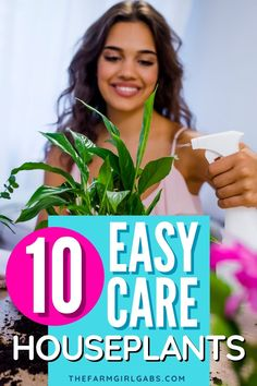 While some houseplants take a lot of time and upkeep, there are a variety of easy-care houseplants that are fairly maintenance-free. Do you have any of these low-maintenance houseplants in your home? Easy Care Houseplants, Disney Planning, Amazing Gardens, Gardening Tips, Free, About Me Blog, Advice, Friends, Ideas